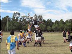 3º fecha PUMANQUE vs CACHORROS... line out