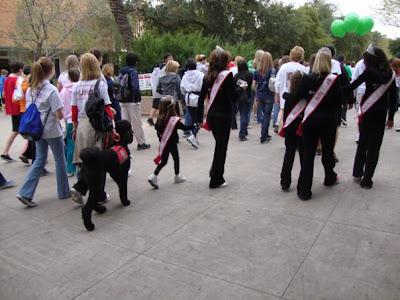 Students Supporting Brain Tumor Research, Dylan Hendricks, Miss Arizona,  Arizona Pageants, Donati,  National American Miss, Is National American Miss a scam?, charity walks,NAM, NAmiss,
