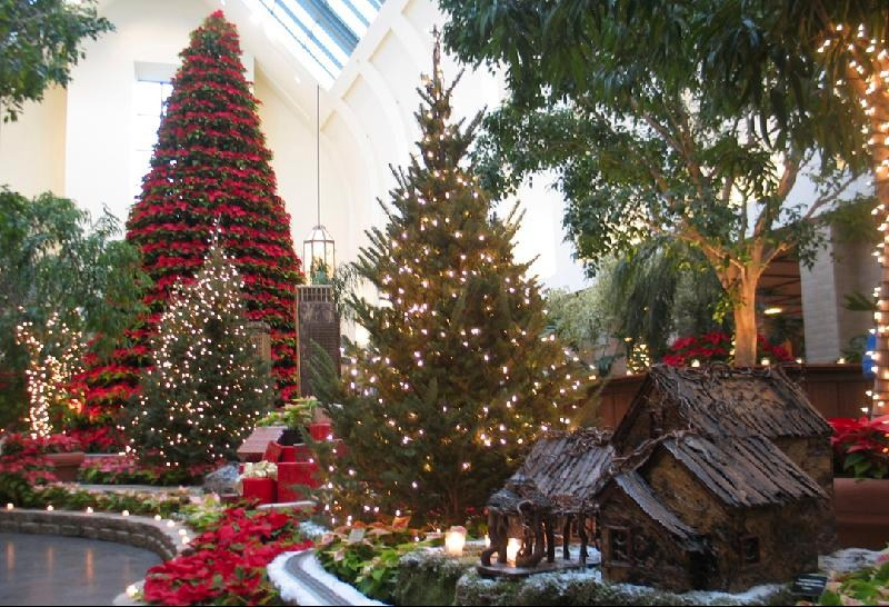 Terrific From The Edge Of The Prairie    Sunday At The Lauritzen  With Outstanding What A Wonderful Day Out At The Lauritzen Gardens In Omaha I Had No Idea  That There Were So Many Different Kinds Of Poinsettia Miniature To Curly  And All  With Agreeable Plan My Garden Also Saffron Gardens In Addition Little Tikes Garden House And Hoo Garden As Well As Garden Corner Designs Additionally Savage Garden Two Beds And A Coffee Machine From Lynnbowesblogspotcom With   Outstanding From The Edge Of The