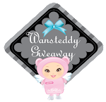 Wansteddy Giveaway