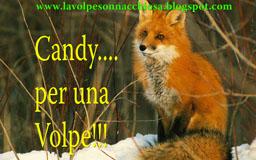 """blog Candy per una Volpe di... """"la Volpe Sonnacchiosa"""""""
