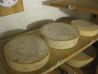 Noella Cheese