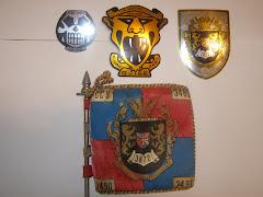 Emblema do 2º Gr.Comb./Emblema da CÇAC3491/Emblema do BCAÇ3872 e Guião do Batalhão