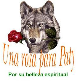 Lobo querido
