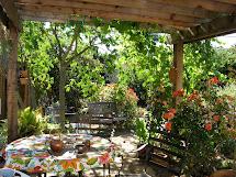 Garden Pergola Design Ideas