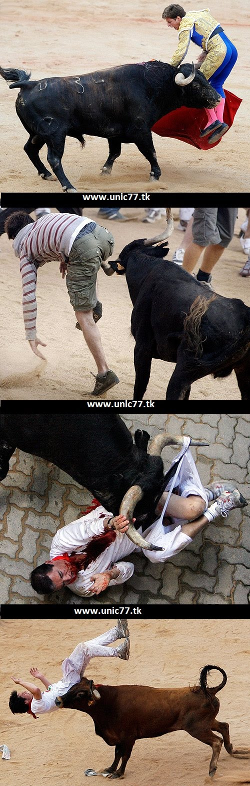 http://2.bp.blogspot.com/_YyXZ9LFygq0/TNSQU5DoC2I/AAAAAAAACtM/Qf7HDiEsa_0/s1600/110210-bull-horns.jpg