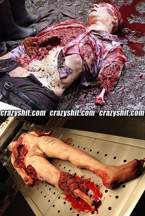 http://2.bp.blogspot.com/_YyXZ9LFygq0/TQBWO3bg6SI/AAAAAAAADlQ/Ctv8chlCuaM/s1600/120810-dead-man-bones.jpg