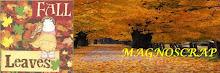 magnoscrap