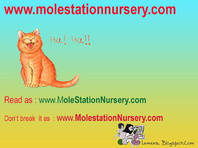 Mispronounced urls,silly domain names having double meaning,www.molestationnursery.com