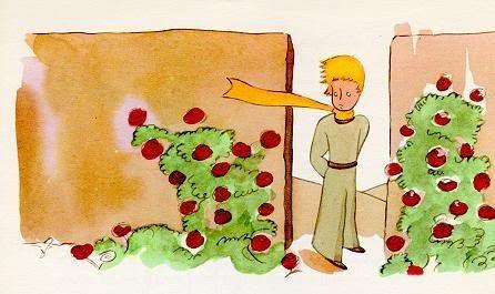 le petit prince le r 233 sum 233 des chapitres 20 225 23