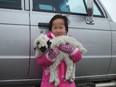 Би Монгол хүн