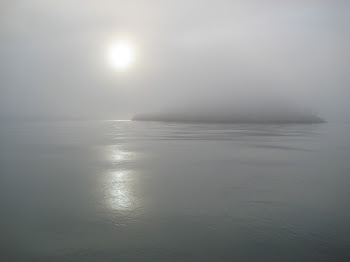 Fog Outside Of Friday Harbor