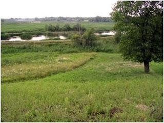 Продам земельные участки в Раменском районе город Бронницы от собственника.ФОТО