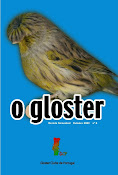 Revista acerca do Gloster