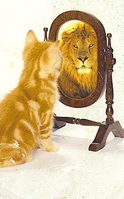 http://2.bp.blogspot.com/_Z6zWRdUwMuQ/S0jgv8PwqiI/AAAAAAAABZk/5ZTFOoxec-c/s400/cat_lion.jpg