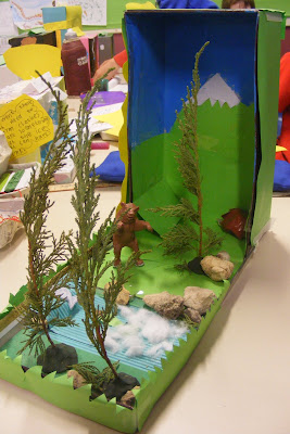 Rainforest Ecosystem Diorama