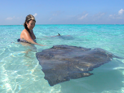 and Stingray makes three, for this Grand Cayman Wedding - image 5