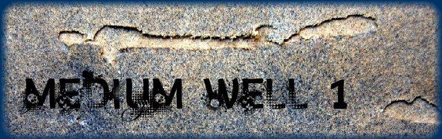 [mediumwell1]