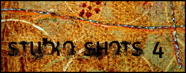 [studio+shots+4]