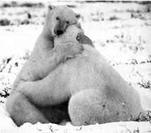 Vivir haciendo el oso.