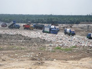 Environmental issues in malaysia essay