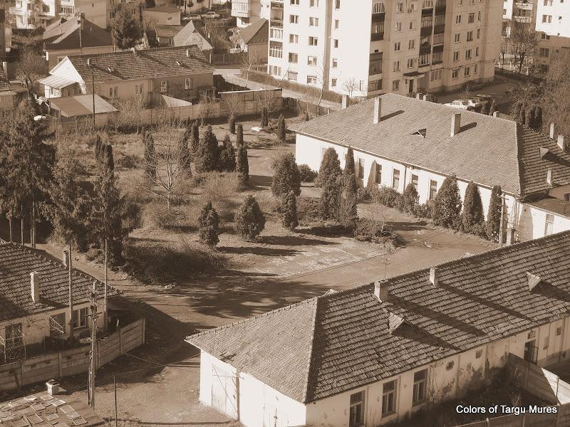 Statiunea de cercetare si productie pomicultura Mures, strada Pasunii nr. 1 Tg. Mures,