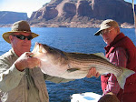 Lake Powell Fishing Guides & Boats