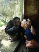 monkey lovin&#39;