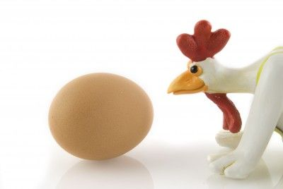Controversies of the chicken and the egg which really came first?