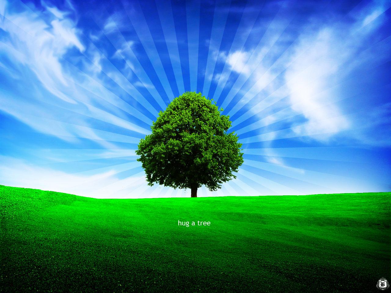 http://2.bp.blogspot.com/_ZJXgVeR9EN8/TApkjoRrE1I/AAAAAAAAADA/WTnYoTTnsS8/s1600/hug_a_tree_by_goergen.jpg