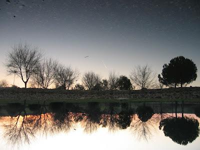 El hombre delgado enero 2009 for Como hacer una laguna artificial