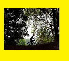 Sepeda alam bebas