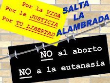 SALTA LA ALAMBRADA