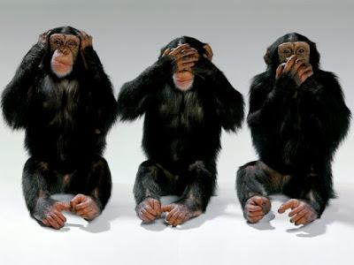 http://2.bp.blogspot.com/_ZMqc6Qtu08A/SSNr4-xdcgI/AAAAAAAAAVI/bxURHwMcqT4/s400/see+hear+speak+no+evil.jpg