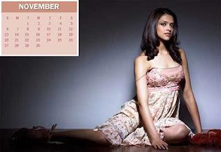 New Year Calendar 2011 - November