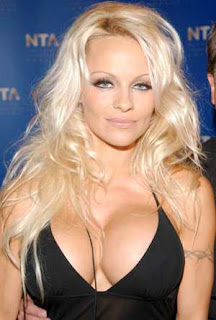 Hot Pamela Anderson left shaken by stalker