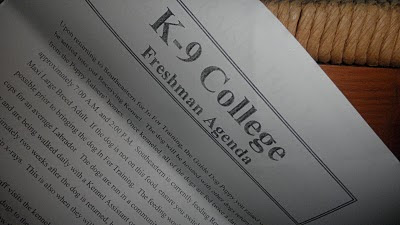 A picture of the SEGD letter that says K-9 College, Freshman Agenda at the top