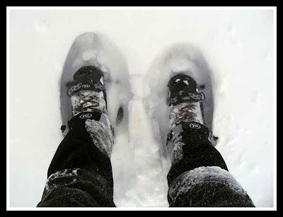 nieve y raquetas