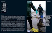 Reportajes Publicados