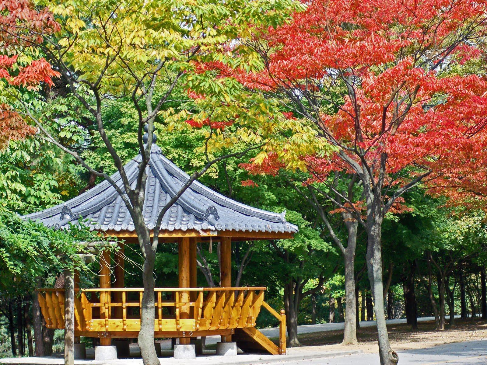 Kmon In Beautiful Korea