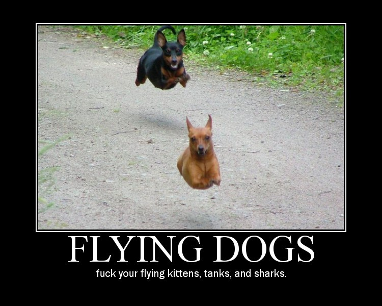 funny motivational pics. funny motivational. funny