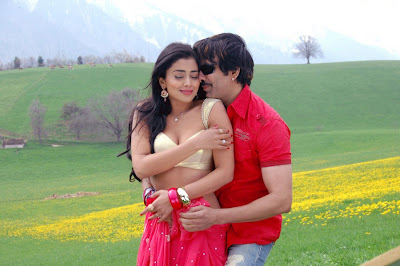 Shreya Saran Hot Photos in Movie Don Seenu 03a