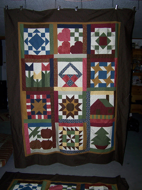 Thimbleberries Quilt 07