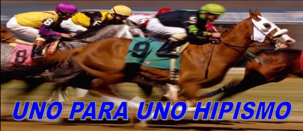 UNO PARA UNO HIPISMO carreras de caballos para la Rinconada