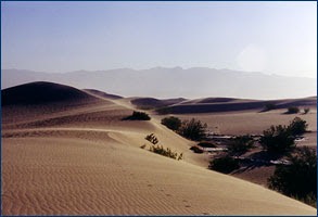 a geographical overview of the desert biomes on earth