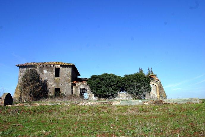 L 39 agro romano e la riserva di decima malafede giugno 2010 - Casali di campagna ...