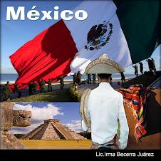 DISFRUTA LAS MARAVILLAS MEXICANAS