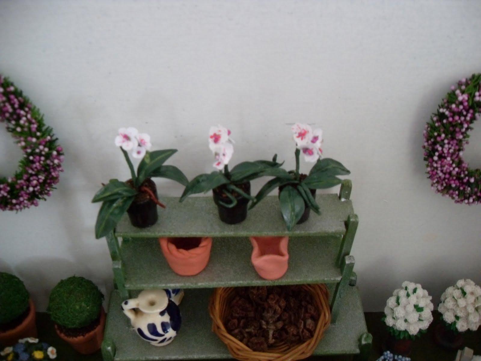 Eilandtuin in miniatuur: november 2010