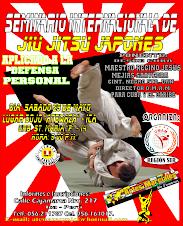 Seminario Internacional de Jiu Jitsu en Ica