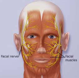Doctors Gates: Ramsay Hunt Syndrome(clinical)
